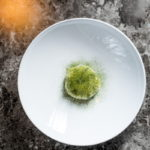 Scallop - Cucumber